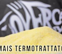Mais Termotrattato Over Carp Baits Self Made CarpFishing