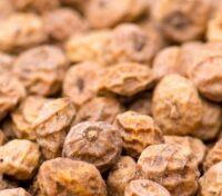 Northern Baits Tigernuts Secche 12,5Kg