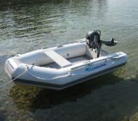 Tender ViaMare 250T Carpfishing Spinning Mare Lago - Spedizione Gratuita