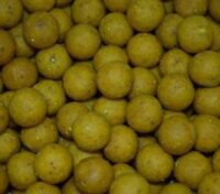 Fishcon Feed Boilies 20 mm Mais Sweetcorn